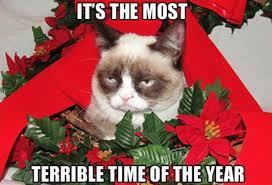 Grumpy Cat 2014 terá o pior natal de todos os tempos