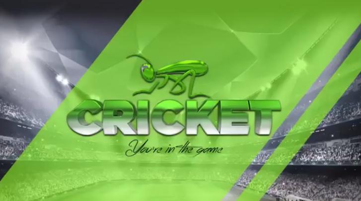 Saiba detalhes de como funciona o negócio da Cricket e quais são os indícios que apontam a suposta pirâmide financeira.